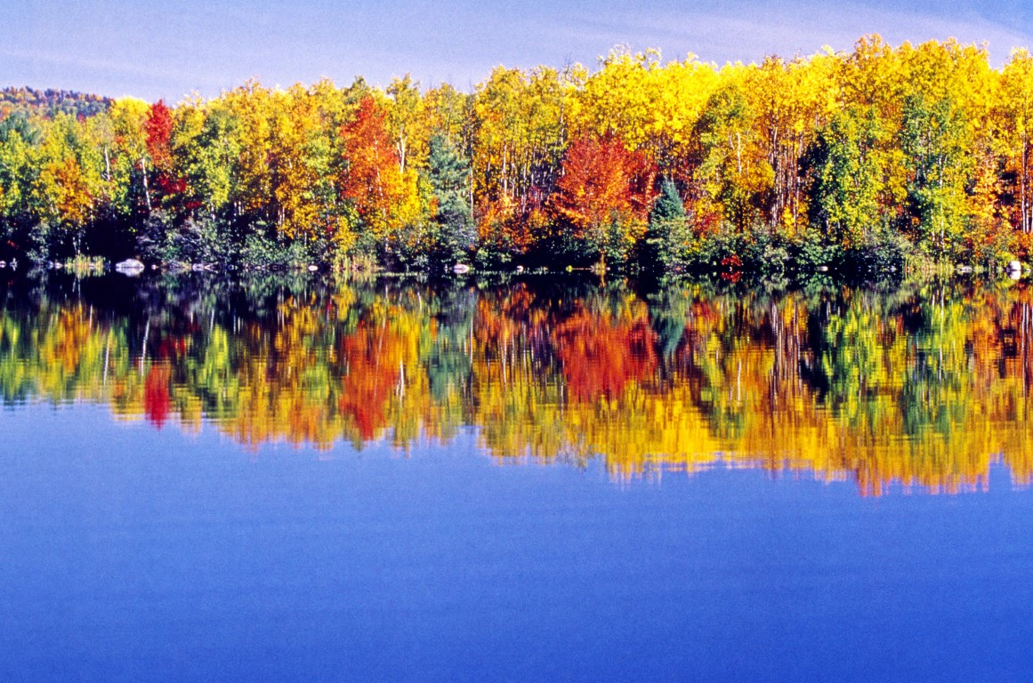 Herbstfarben in Ontario, Kanada. Indian summer colors in Ontario, Canada