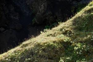 Apalačské pohoří
